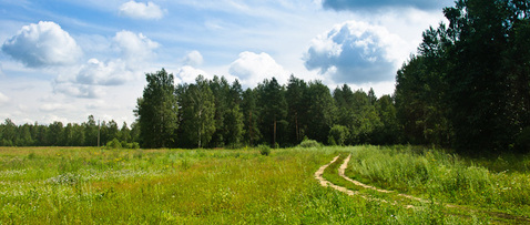 Большой участок 5.7 га. в район Звенигорода и Голицыно 45 км. от МКАД - Фото 4
