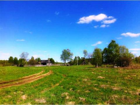 Земельный участок в Тверской области - Фото 3