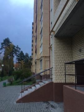 Аренда. 1-но комнатная квартира. г.о. Домодедово, сан. Подмосковье - Фото 1