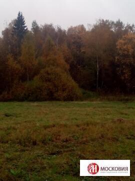 Лесной участок 15 соток в Клоково, ИЖС, Москва, Калужское\Киевское ш. - Фото 2