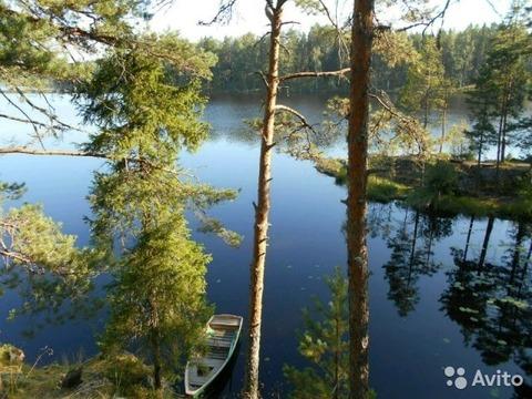 Озеро Былинное, покупка по земельному сертификату - Фото 1