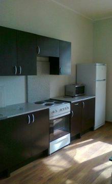 Сдается просторная однокомнатная квартира в новом доме ЖК Зеленая Роща - Фото 5