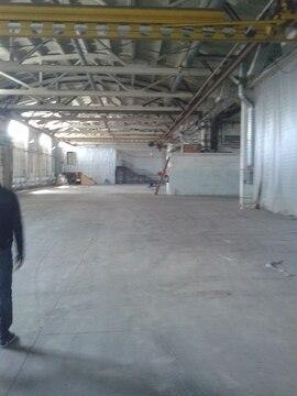 Сдам склад пр-во 1200 м, к/б 3-5т, пандус авто ж/д - Фото 4