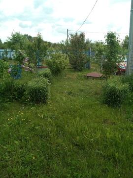 Дачный участок в СНТ Колос - Фото 5