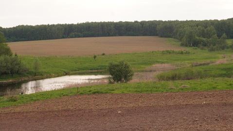 Участок на пруду 30,8 соток д. Петрово, г.Малоярославц - Фото 4