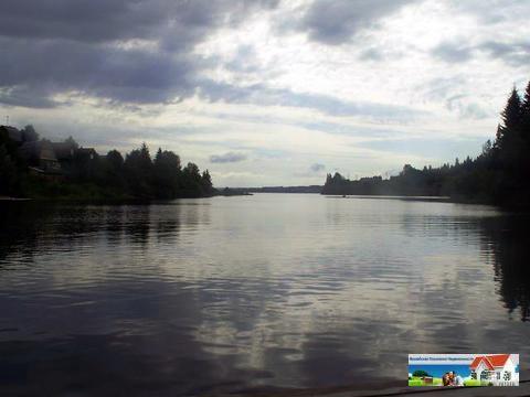 Участок на берегу реки, 24 сотки, МО, Рузский р-н, 100 км от МКАД. - Фото 1