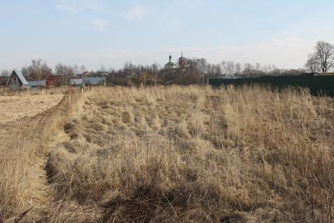 12 соток д.Шубино Домодедовского района - Фото 5