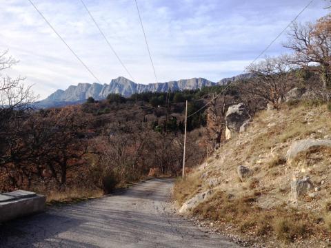 Участок с шикарной панорамой, среди сосен, ели и можжевела - Фото 2