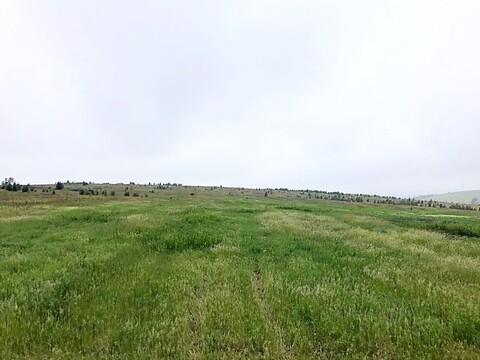 Зем.уч. 10 км.Александровского тракта - Фото 4
