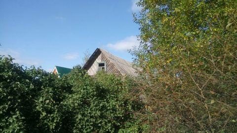 Продается участок 25 соток ИЖС в дер. Алапурская Гатчинского р-на - Фото 2