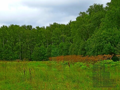 Земельный участок 20 соток в кп Бариново-парк - Фото 1