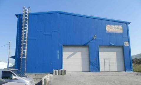 Производственно-складская база, 3250 кв.м, Миасс - Фото 1