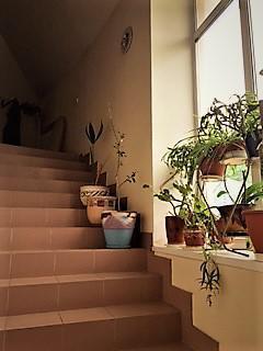 Сдам жилое помещение в кп Высота, г. Троицк Калужское ш. 17км от МКАД - Фото 3