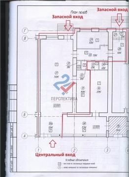 Аренда помещения 142,2м2 на Пушкина - Фото 5