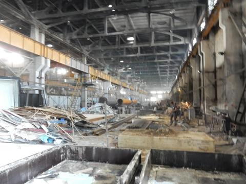 Аренда Сдаю 2 Гектара производственно-складского помещения - Фото 4