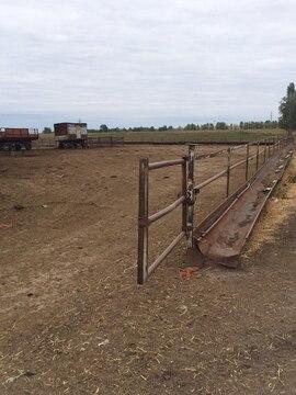 Продается ферма в Белгородской области - Фото 2