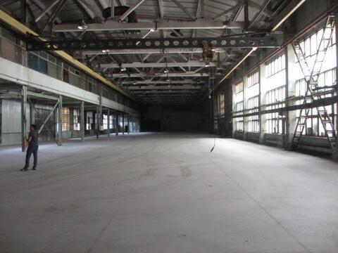 Теплый склад 2 700 м2 с кран-балкой в Видном - Фото 1