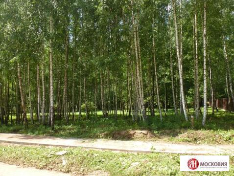 Лесной земельный участок 15 соток, все коммуникации, 30 км от МКАД - Фото 5