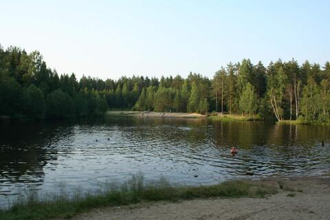 Супер место для отдыха , 5 км от Раздолья, оз.Былинное - Фото 1