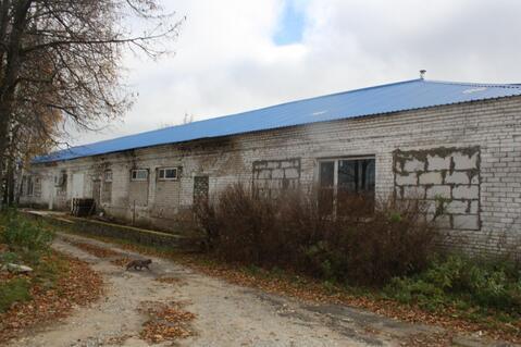 Производственный завод по изготовлению сыра - Фото 1