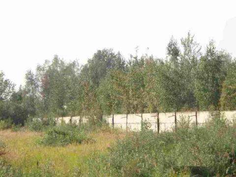 Пром. участок 3,6 Га с ж/д веткой в г.Электроугли в 29 км от МКАД - Фото 1