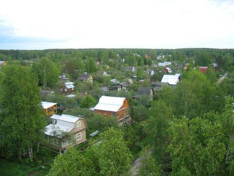 Земельный участок 8 соток расположенный по адресу: п. Киевский, СНТ - Фото 1