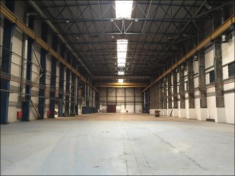 Сдам производственный комплекс 16 000 кв.м. - Фото 1