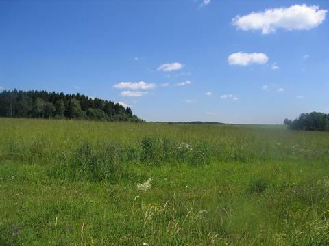 Великолепный участок 65 Га для поселка с ту в 45 км по М-4 - Фото 1