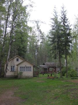 Сдается дом курортном р-не, пос. Комарово на общей тер-рии в 60 сот - Фото 2