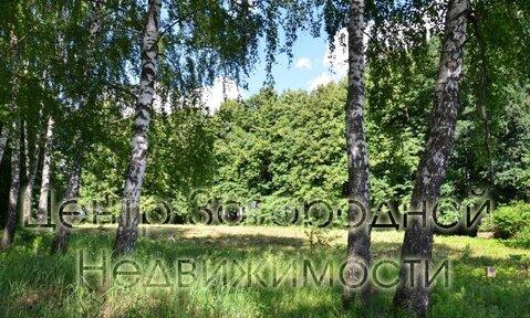 Участок, Калужское ш, Варшавское ш, 35 км от МКАД, Песье д. . - Фото 5