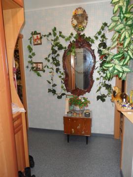 2-комнатная квартира Солнечногорский р-н, пос. Андреевка, д.20а - Фото 3