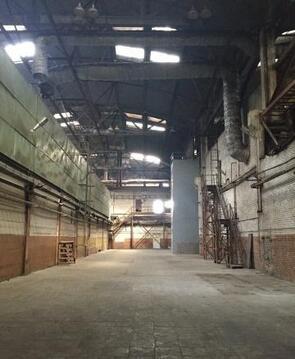 Сдам складское помещения без комиссии. - Фото 5