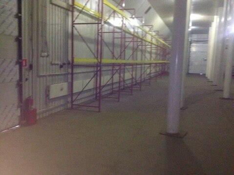 Сдается склад на закрытой территории - Фото 2