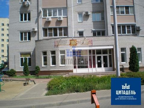 Офис 195 кв.м, Три Богатыря - Фото 2