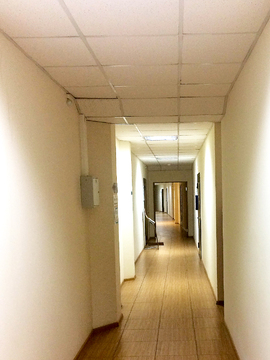 Офис в аренду, 50кв.м. ул. Белинского, есть парковка. Нов. дом, центр. - Фото 4