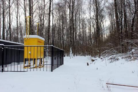 Лесной участок в Пучково - пригороде г. Троицк - Фото 5
