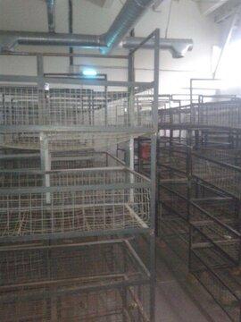 В аренду под склад производство в т.ч Пищевое 1100 кв.м. Без комиссии - Фото 4