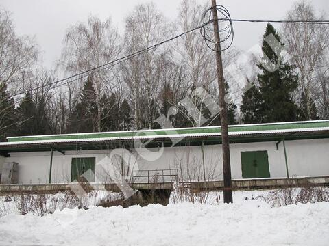 База в Зеленом Городе - Фото 1