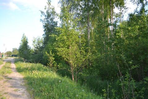 Продается лесной участок 20 сот. на границе Петербурга - Фото 4
