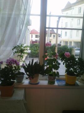 Купить однокомнатную квартиру с ремонтом в Новороссийске - Фото 3