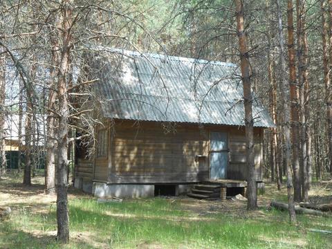 Охотничий домик в лесу вблизи озера - Фото 2