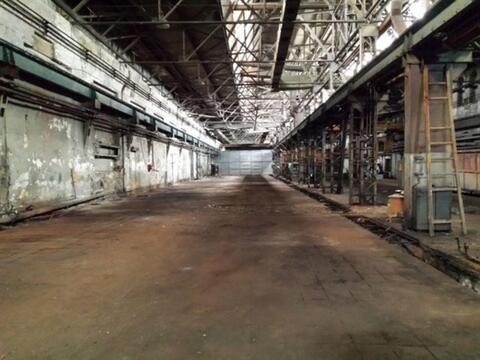 Сдам производственное помещение 950 кв.м, м. Площадь Ленина - Фото 1