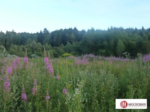 Лесной участок 18.4 соток. Коммуникации, прописка Москва. 30 км от МКАД - Фото 3