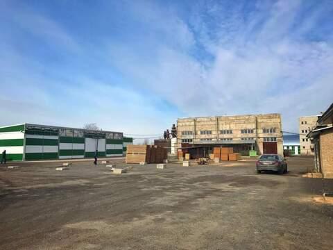 Продажа действующего деревообрабатывающего завода - Фото 5