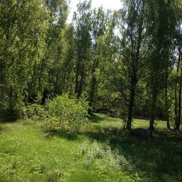 Участок вблизи рыбного озера Вишневское - Фото 2