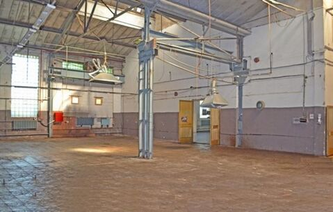 Сдам производственное помещение 905 кв.м, м. Балтийская - Фото 1