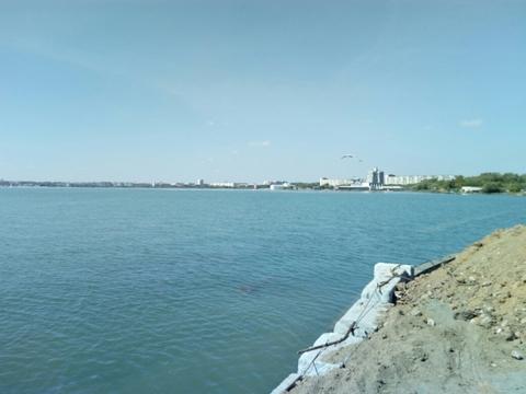 Участок 25 соток с береговой линией - Фото 4