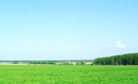 15 соток Домодедовский район, пос. Повадино 40 км от МКАД - Фото 3