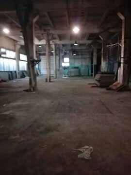 Сдам производственное помещение 821 кв.м, м. Черная речка - Фото 5