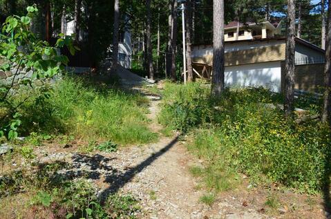 Участок в экологически чистом районе, Долоссы - Фото 4